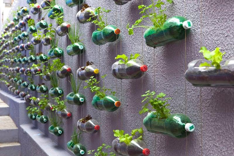 umweltfreundliche gartendekoration aus alten flaschen und blumen
