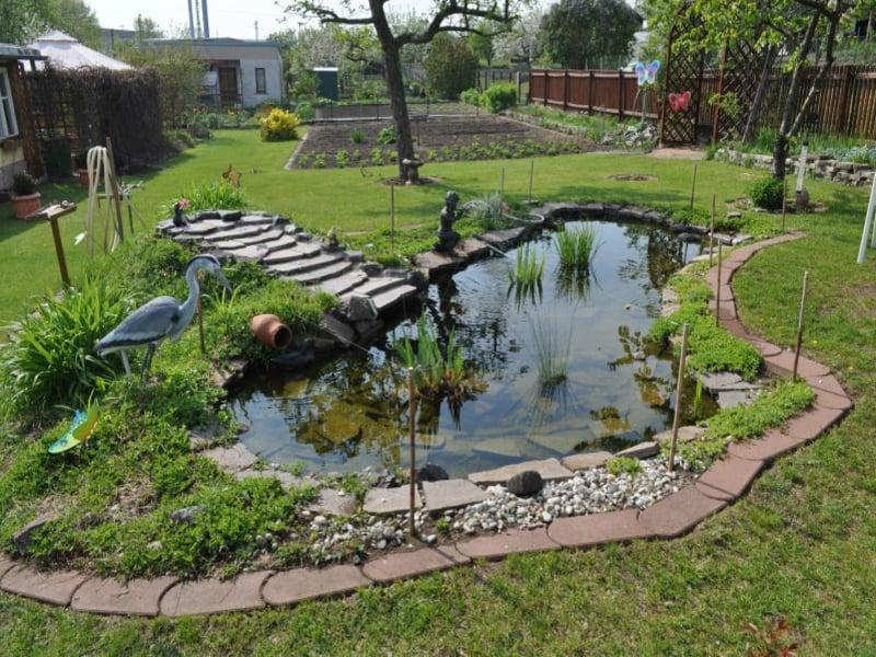 Wie einen wassergarten f r extravaganz selbs anzulegen for Bache etang firestone prix