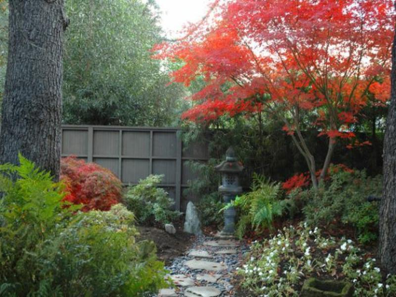 Rote Farbe im japanischen Garten