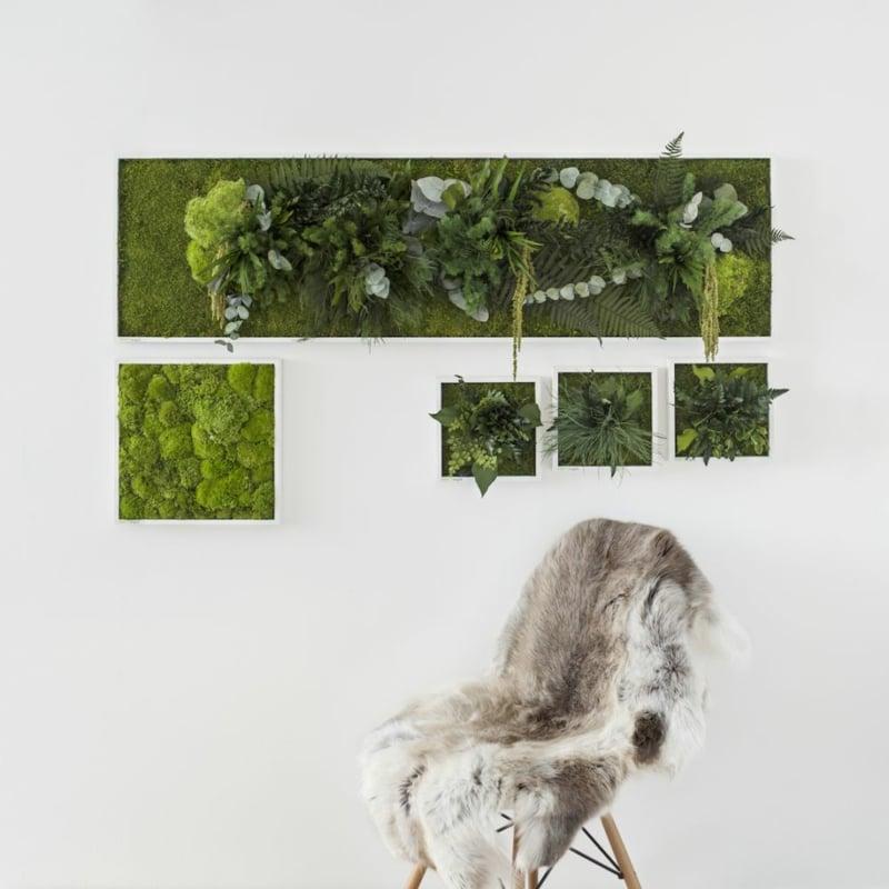 vertikaler garten Pflanzen und Moosbilder