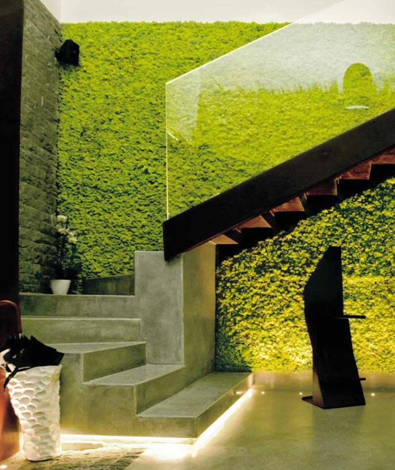 vertikaler garten Wandbegrünung mit Moss 4