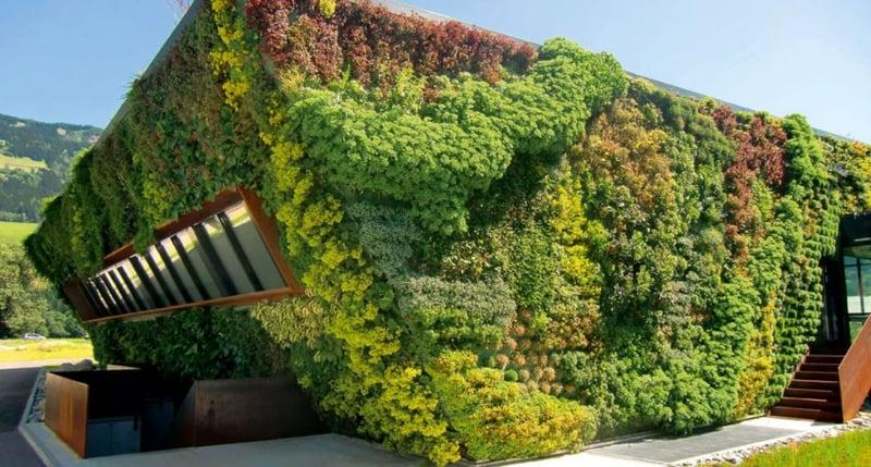 vertikaler garten home wall garden