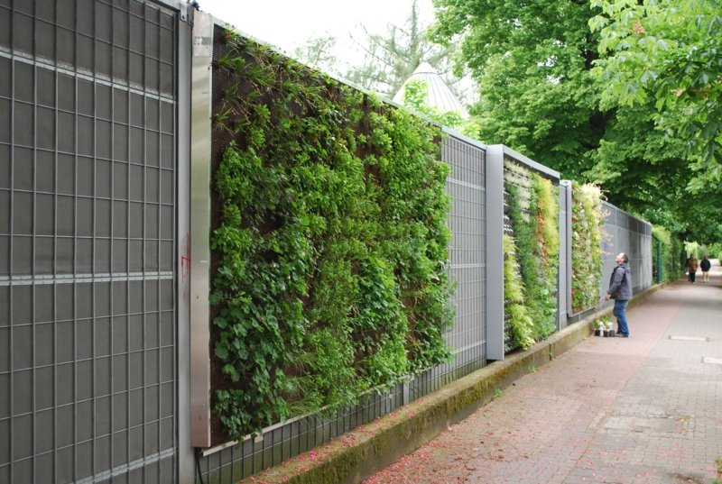 vertikaler garten pamengarten4