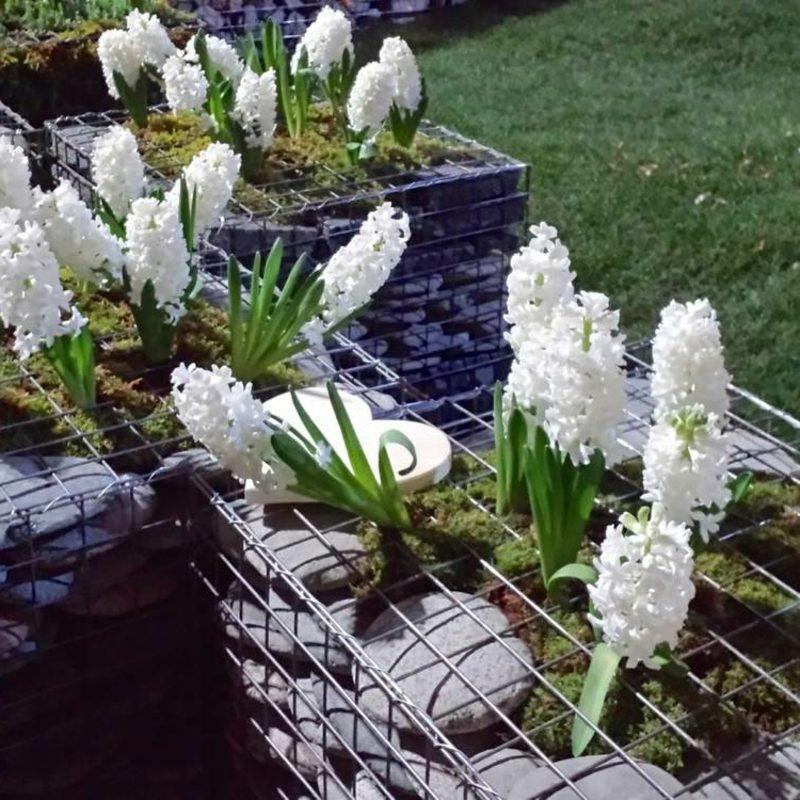 kreative Gartengestaltung Gabionenzaun