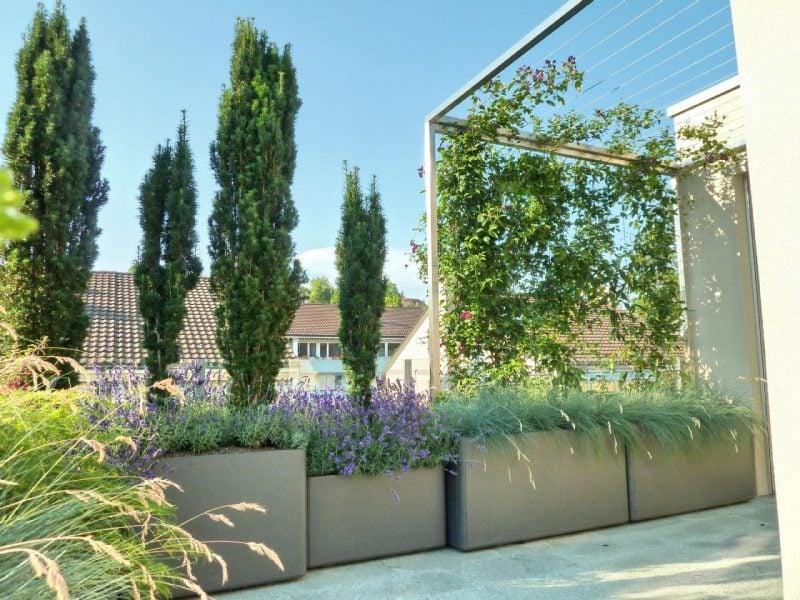 Schattenliebende Terrassenpflanzen