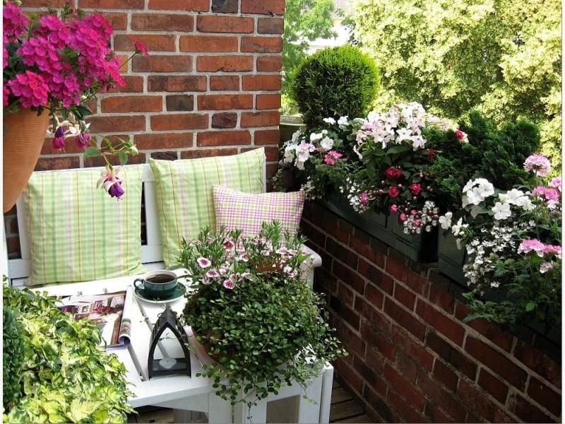 originelle Terrassenbepflanzung