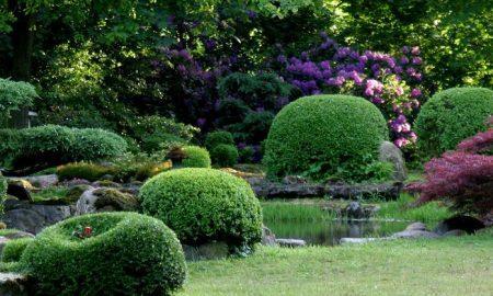 japanischer Steingarten