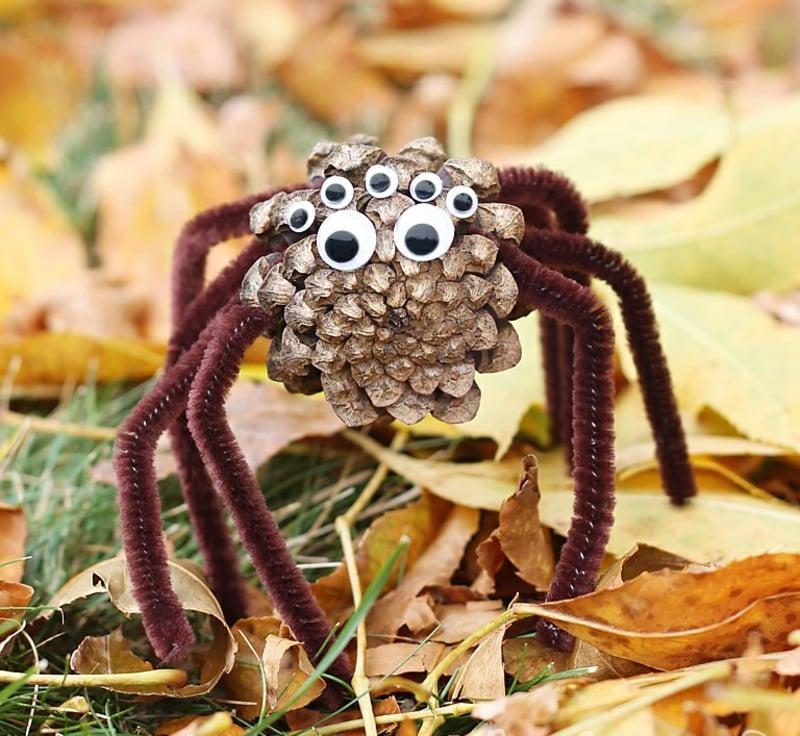 Basteln Mit Tannenzapfen Spinne