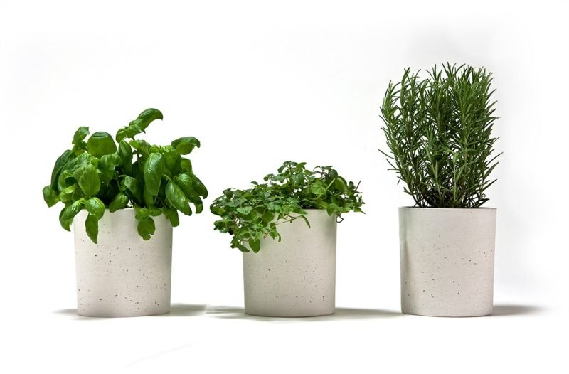 Beton Pflanzkübel selber machen - DIY - ZENIDEEN