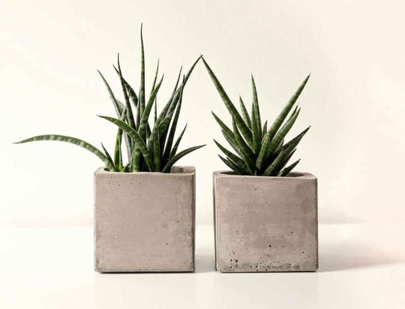 beton pflanzkübel Pflanztoepfe