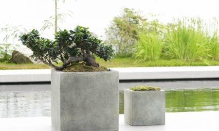 beton-pflanzkübel-bastelideen