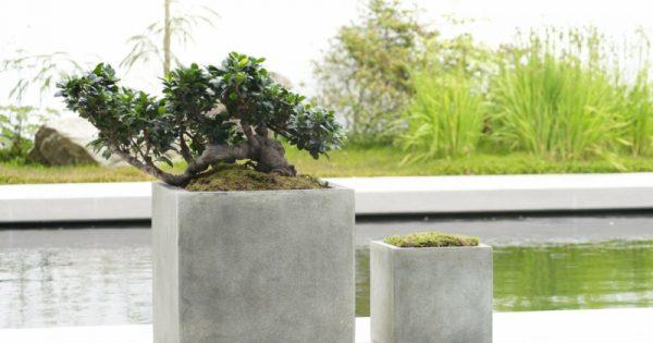beton pflanzk bel selber machen diy zenideen. Black Bedroom Furniture Sets. Home Design Ideas