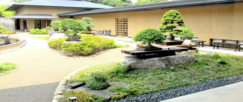Bonsai Arten Garten