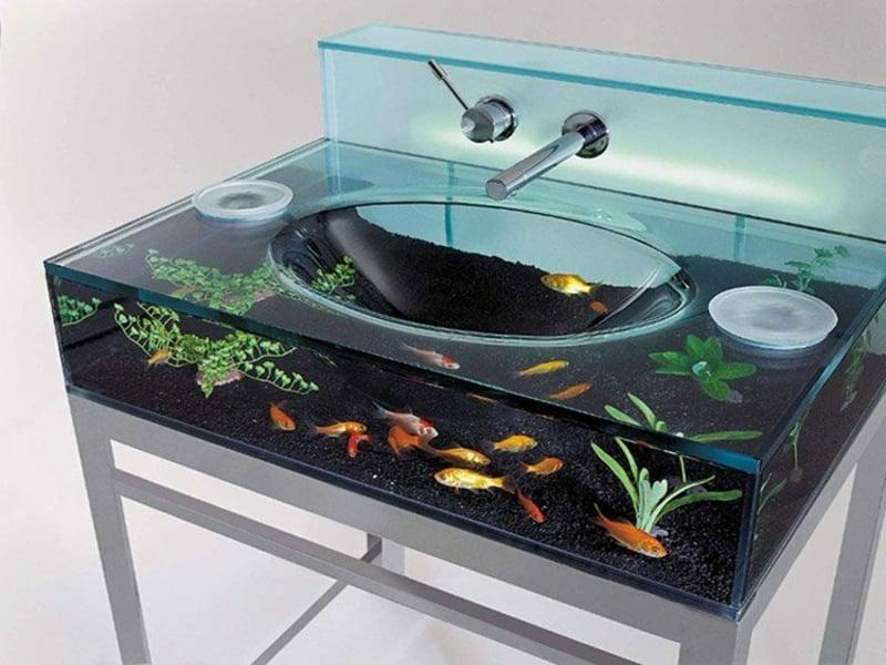 kleines aquarium im waschbecken