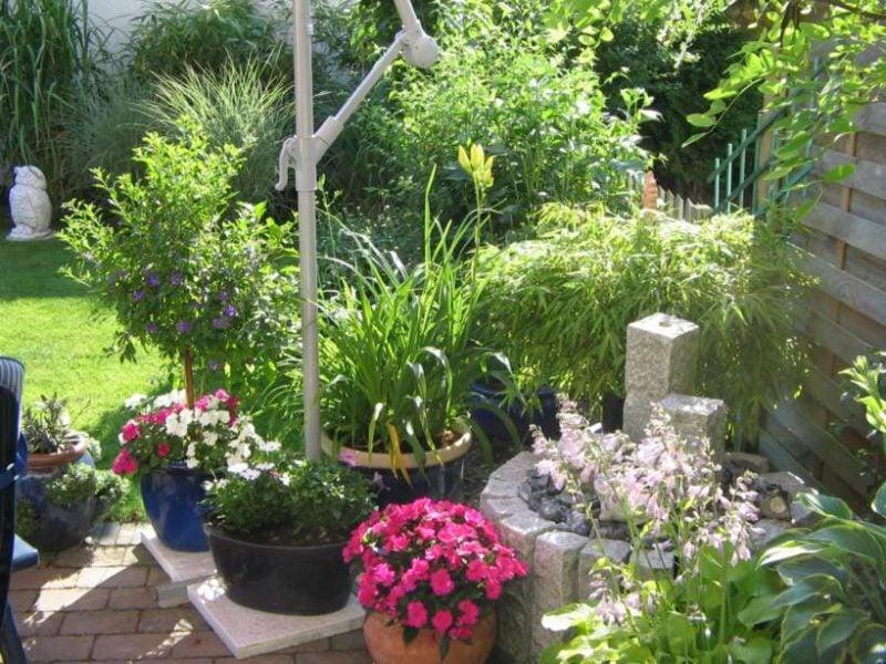 Bepflanzung der Terrasse