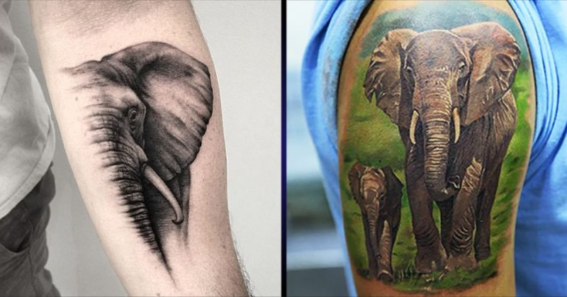 Elefant Tattoo Maenner