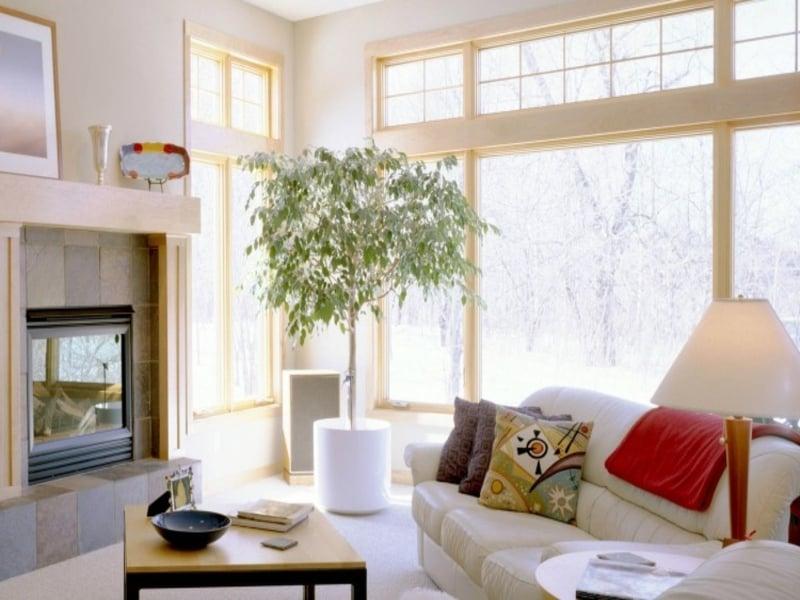 50 Ideen fürs Feng Shui Wohnzimmer