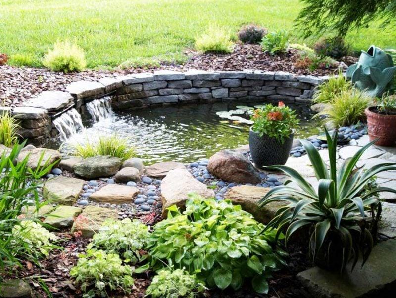 55 Gartenteich Bilder lassen Sie für Ihren Traumgarten inspirieren Garten ZENIDEEN ~ 27032343_Gartenteich Pflanzen Wachsen Nicht