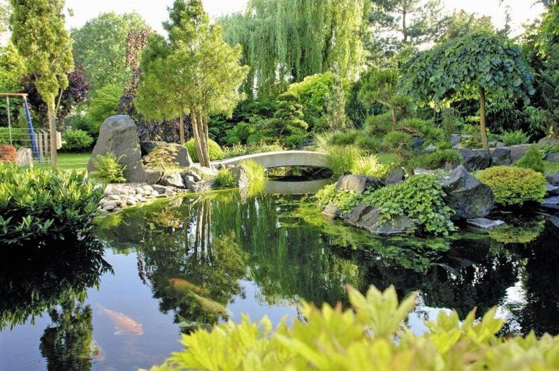 Gartenteich Bilder Design