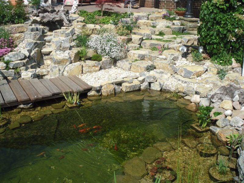 Gartenteich Bilder Steine
