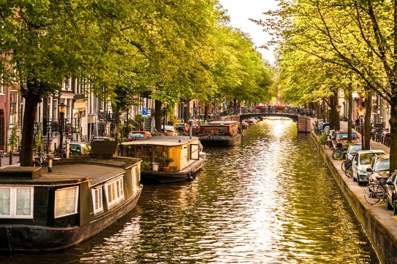 hausboote in amsterdam canal istock