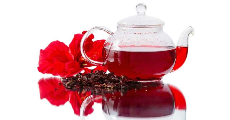 hibiskustee-tea