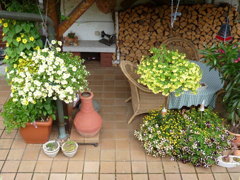Blumen Terrassengestaltung