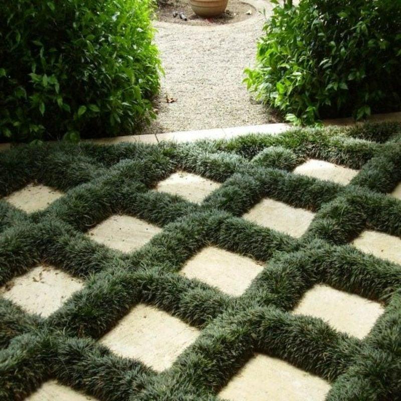 kreative Gartengestaltung Schattenpflanzen