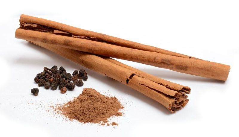 natürliche antibiotika Cinnamomum verum