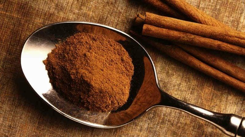 natürliche antibiotika Cinnamon3