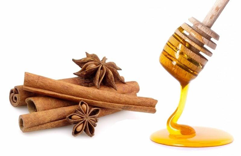 natürliche antibiotika Manuka honey cinnamon