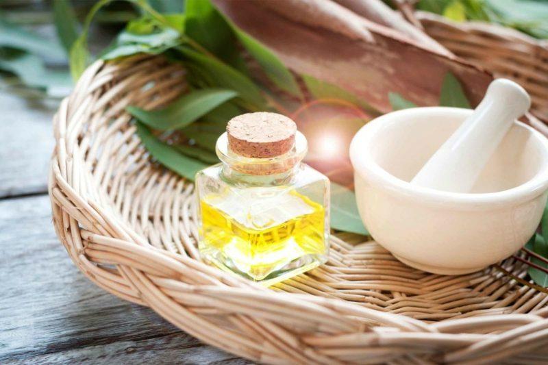 natürliche antibiotika eucalyptus oil