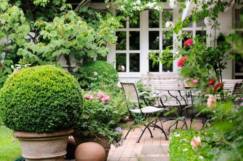 romantische Terrassenbepflanzung