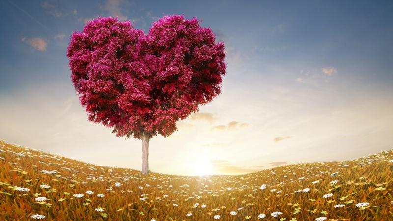romantische-ideen-Images-of-love-7