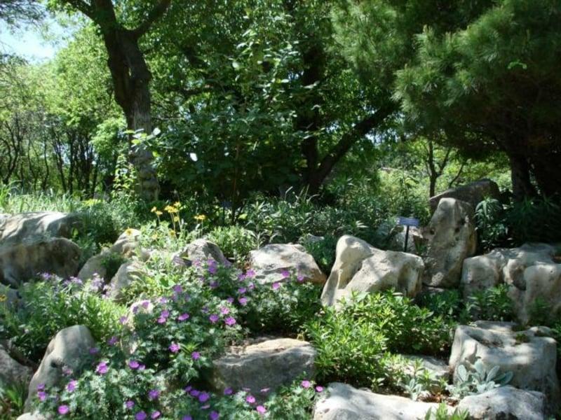 den Garten in grüne Oase verwandeln