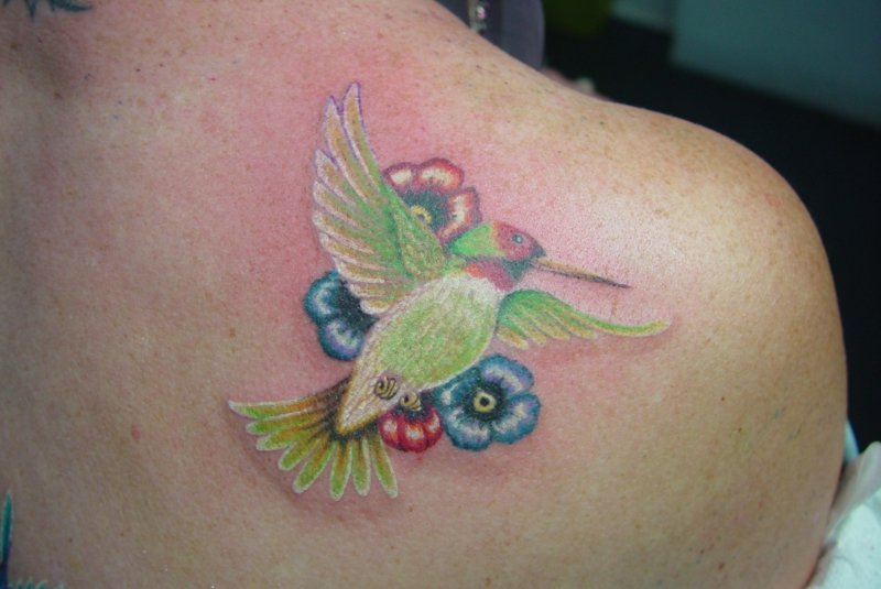 tattoo-kolibri-717561