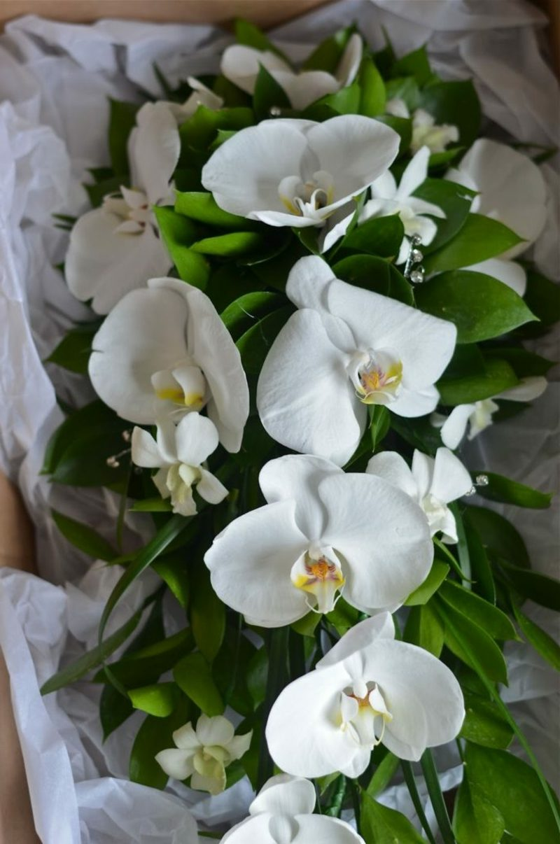 Hochzeitsstrauβ aus weissen Orchideen