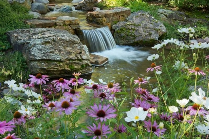Bachlauf mit Wasserfall und herrliche Sommerblumen