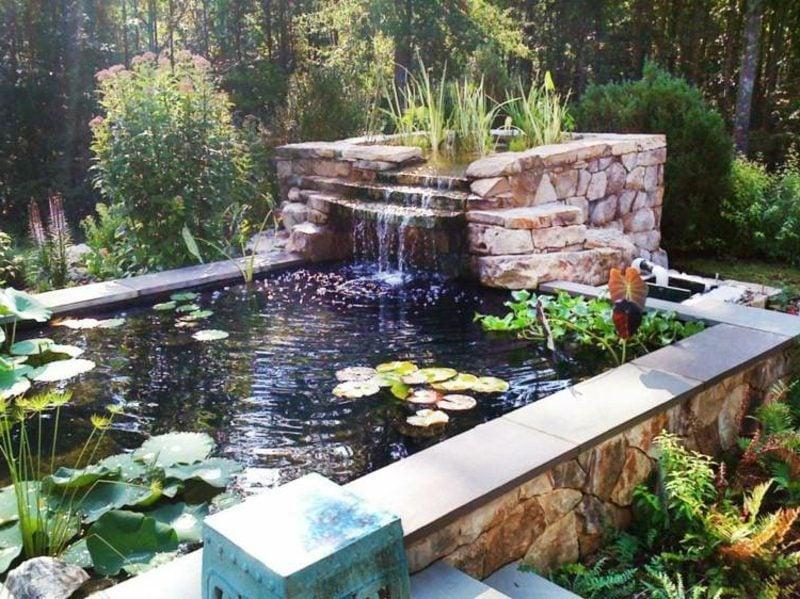 Teich Mit Wasserpflanzen Und Bachlauf Landschaftsbau