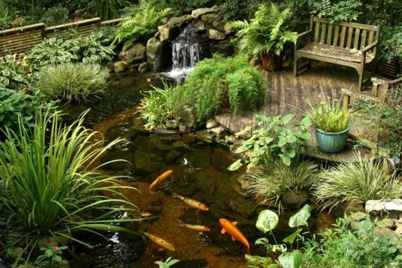 Teich mit Goldfischen und Bachlauf