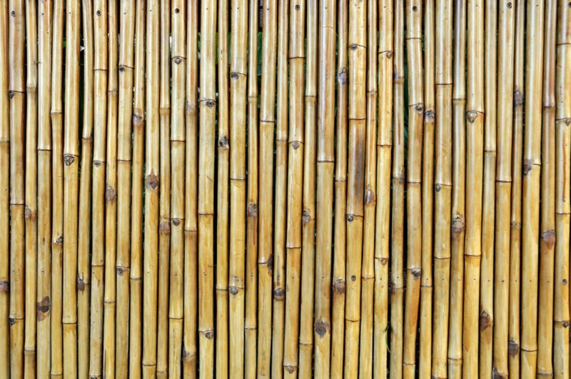 Bambuszaun Muster