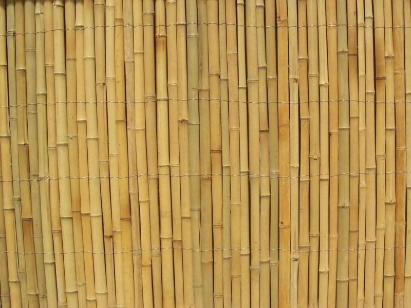 Gartenzaun aus Bambus