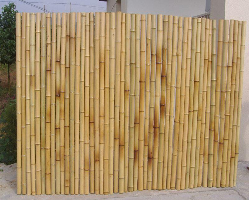 hoher Bambuszaun