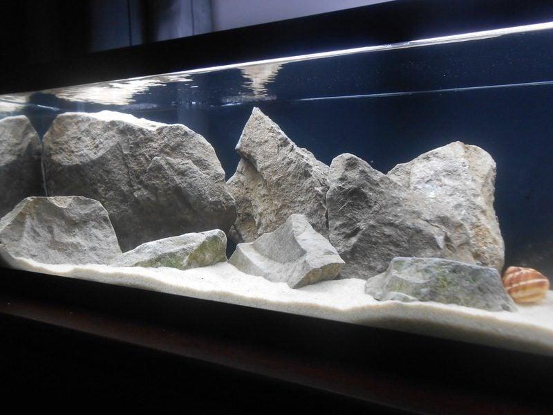 Aquarium Einrichtungsbeispiele große Steine