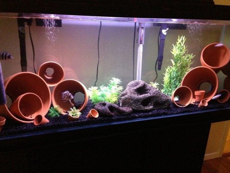 Aquarium Einrichtungsbeispiele Töpfe
