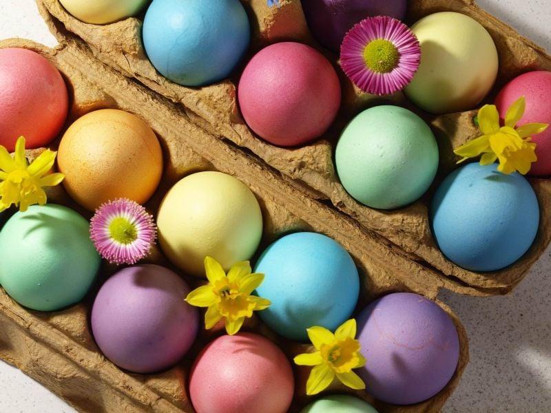 bunte eier färben