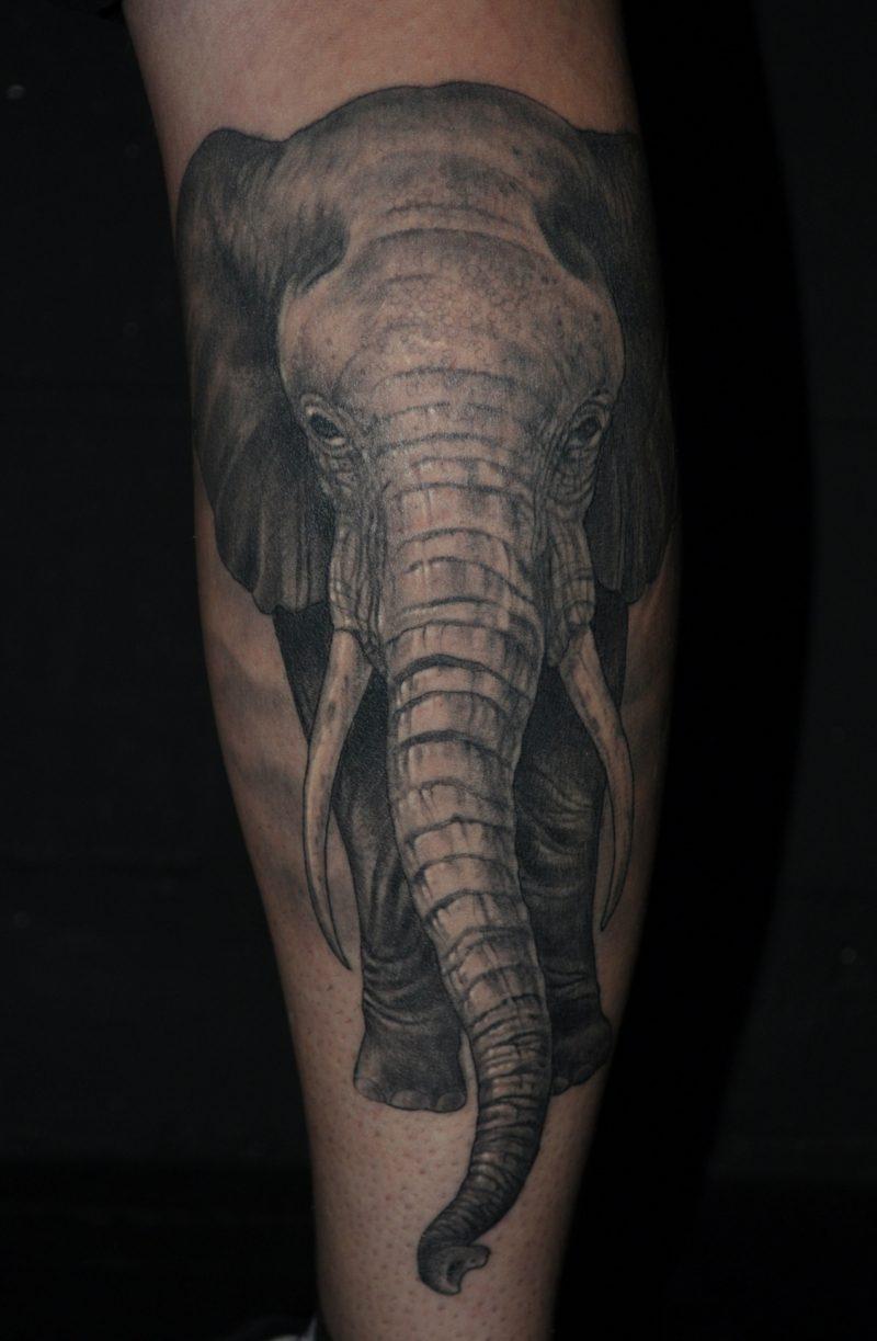 elefanten tattoo