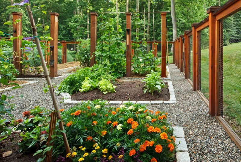 Gartengestaltung mit Kies und Blumen