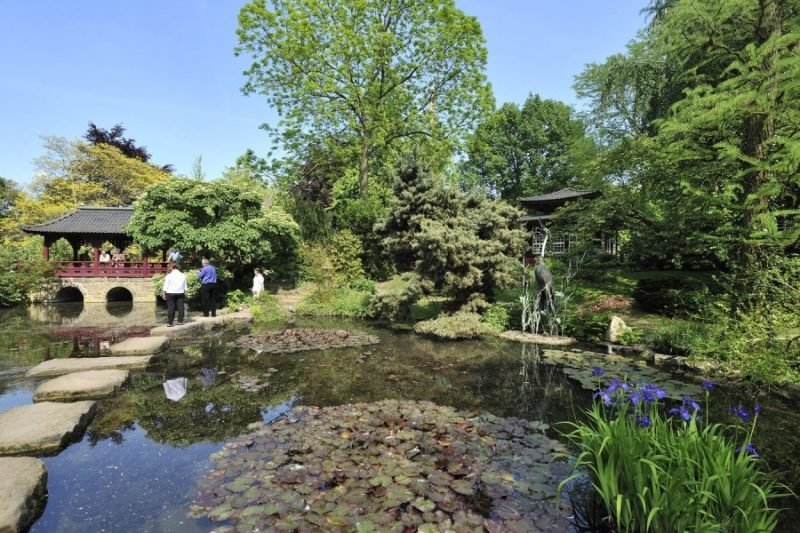 Japanische Gärten Gartenteich