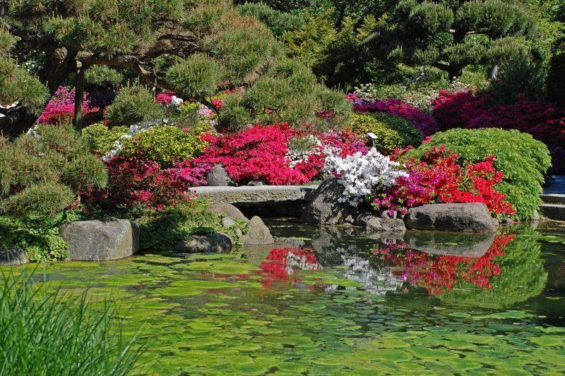 Japanische Gärten Teich